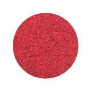 Glomesh Floor Pads Regular Speed 300mm Red Ea