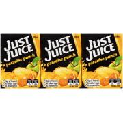 Just Juice Paradise Punch Juice 200ml Poppers Carton 24