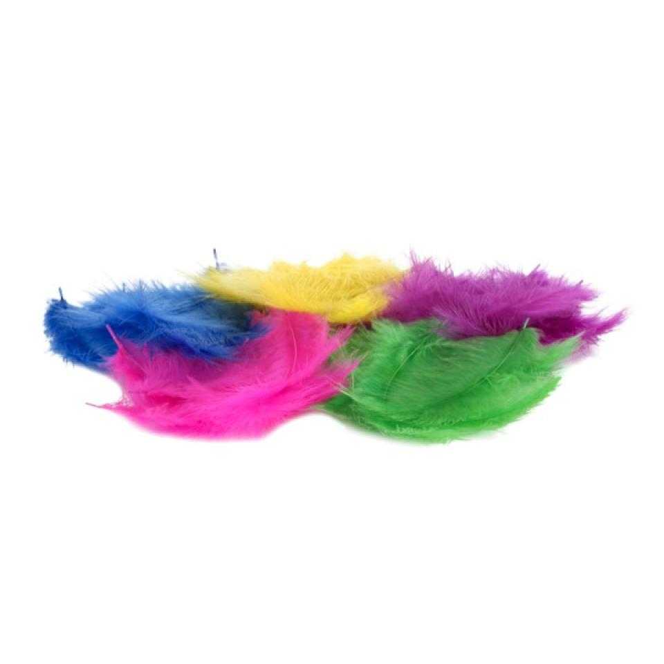 Colorific Feathers Small Assorted Colours Bag Of 50