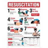 Brady 855383 Resuscitation Sign Wall Chart Full Colour 600H x 450W mm Each