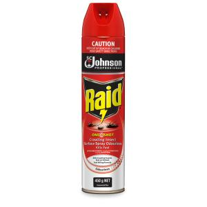 Raid Crawling Insect Killer Odourless Residual 450g