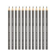 Staedtler Maxi Learner Graphite Pencil 2B Box 12