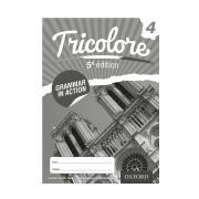 Tricolore Grammar In Action Workbook 4 5e
