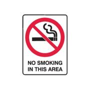 Brady 834749 250X180 Self Adhesive Danger No Smoking In This Area Sign