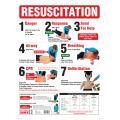 Brady 855383 Sign Resuscitation Wall Chart Full Colour 600H X 450W mm