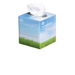 Staples Sustainable Earth Facial Tissue 2 Ply Box 90