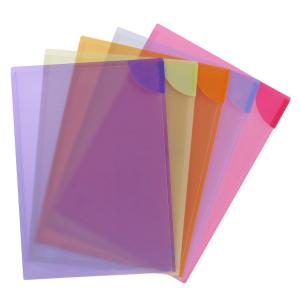 Avery Assorted Plastic Colour Lock Files - 5 Files - Holds 20 Sheets
