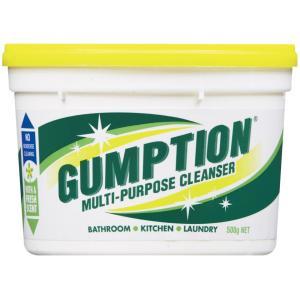 Clorox Gumption Multipurpose Paste Cleanser 500g
