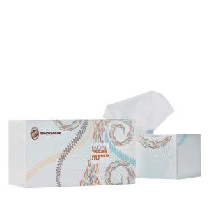 Tjindgarmi Facial Tissue 2ply 200 Sheet Carton 24